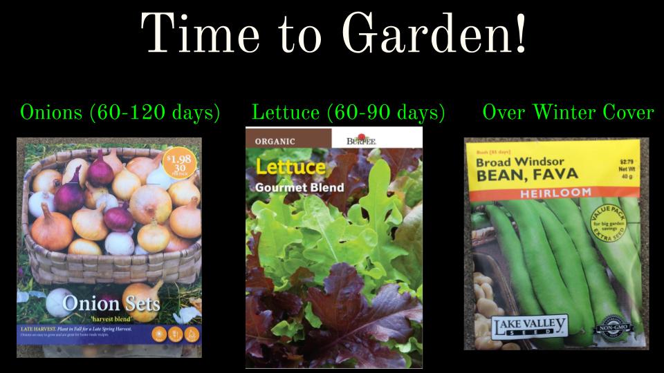 Time to Garden!